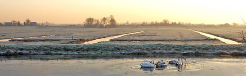 Nederland heeft veel verschillende waterniveaus