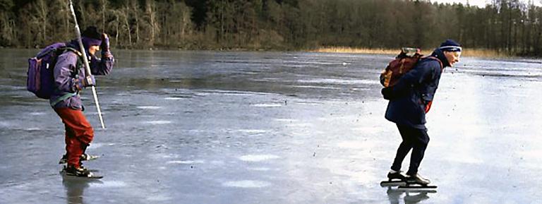 natuurijs Zweden