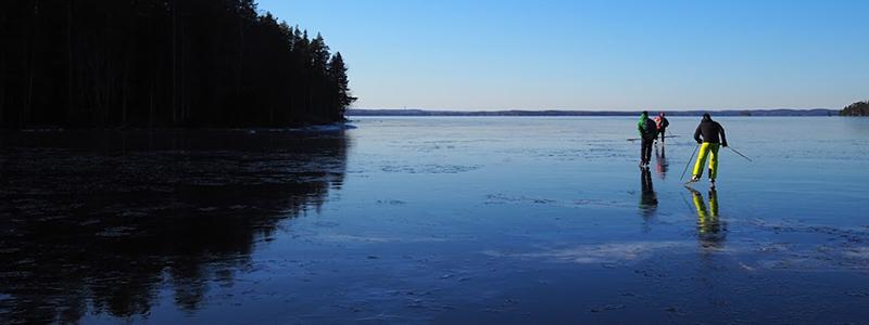 natuurijs Finland